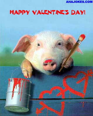 On the Bright Side: Valentine's Day - Cute Animal Pics