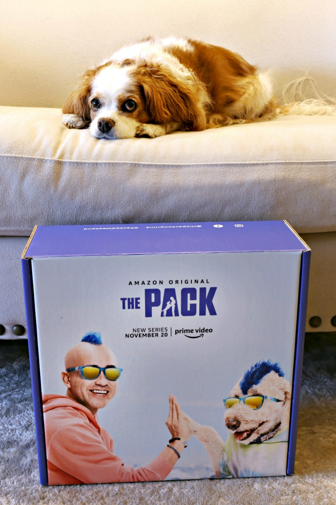 Information about the series, The Pack, on Amazon Prime Video.