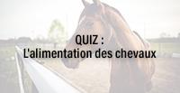 QUIZ : L'alimentation des chevaux