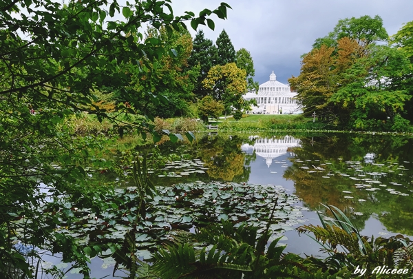 Gradina-Botanica-din-Copenhaga-impresii