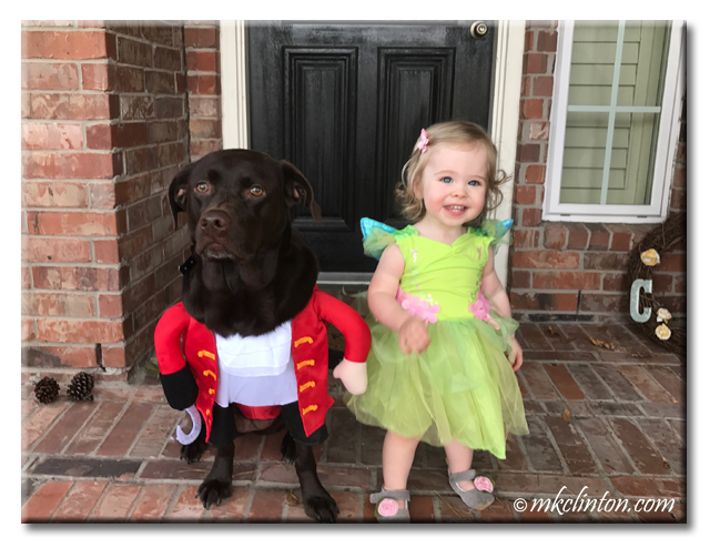 Chocolate Lab dressed as Capt. Hook with toddler dressed as Tinkerbell. copyright all rights reserved