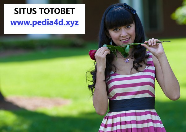 Situs totobet paling paten