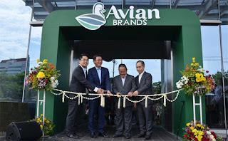 Lowongan Kerja Staf IT, Staff Audit & Gathering Supervisor PT. Avia Avian (Avian Brand) Tangerang
