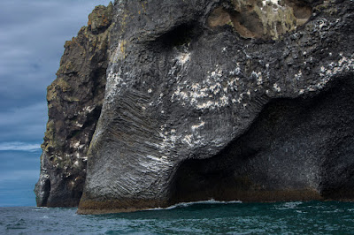 Elephant Rock Iceland on Heimaey in the Westman Islands