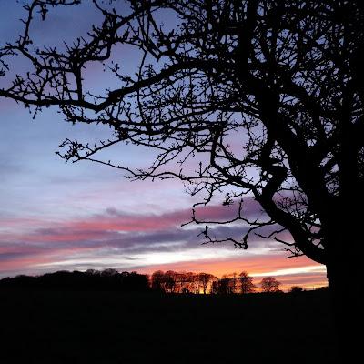 sunset- growourown.blogspot.com ~ ecotherapy blog