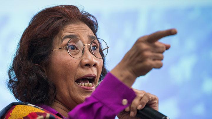 Kuota Ekspor Benur Lobster Dinikmati Politisi, Saiful Anam: Bisa Jadi Bu Susi Digeser Karena Idealis