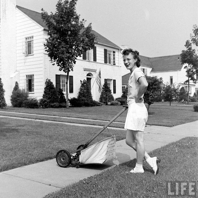 50 Vintage Photographs That Capture Suburban Life In New