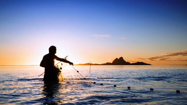 Pesca na Polinésia Francesa ou Ilhas de Tahiti