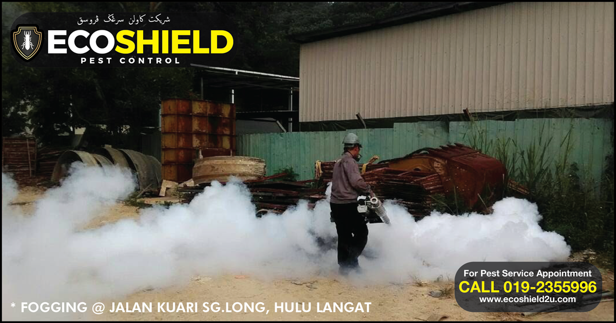 Eco Shield Pest Control Malaysia - Fogging
