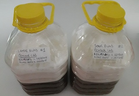 salt lab Share print the surfing scientist  tricks salt experiment how and why does water mix in our oceans and what's flipping your cordial cup got to do with it.