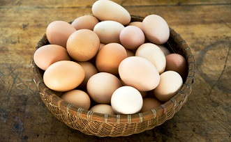 Do Not Put Your Eggs In One Basket: An Advice By A Lady For The Ladies
