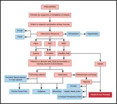 Detailed Chart showing Pneumonia