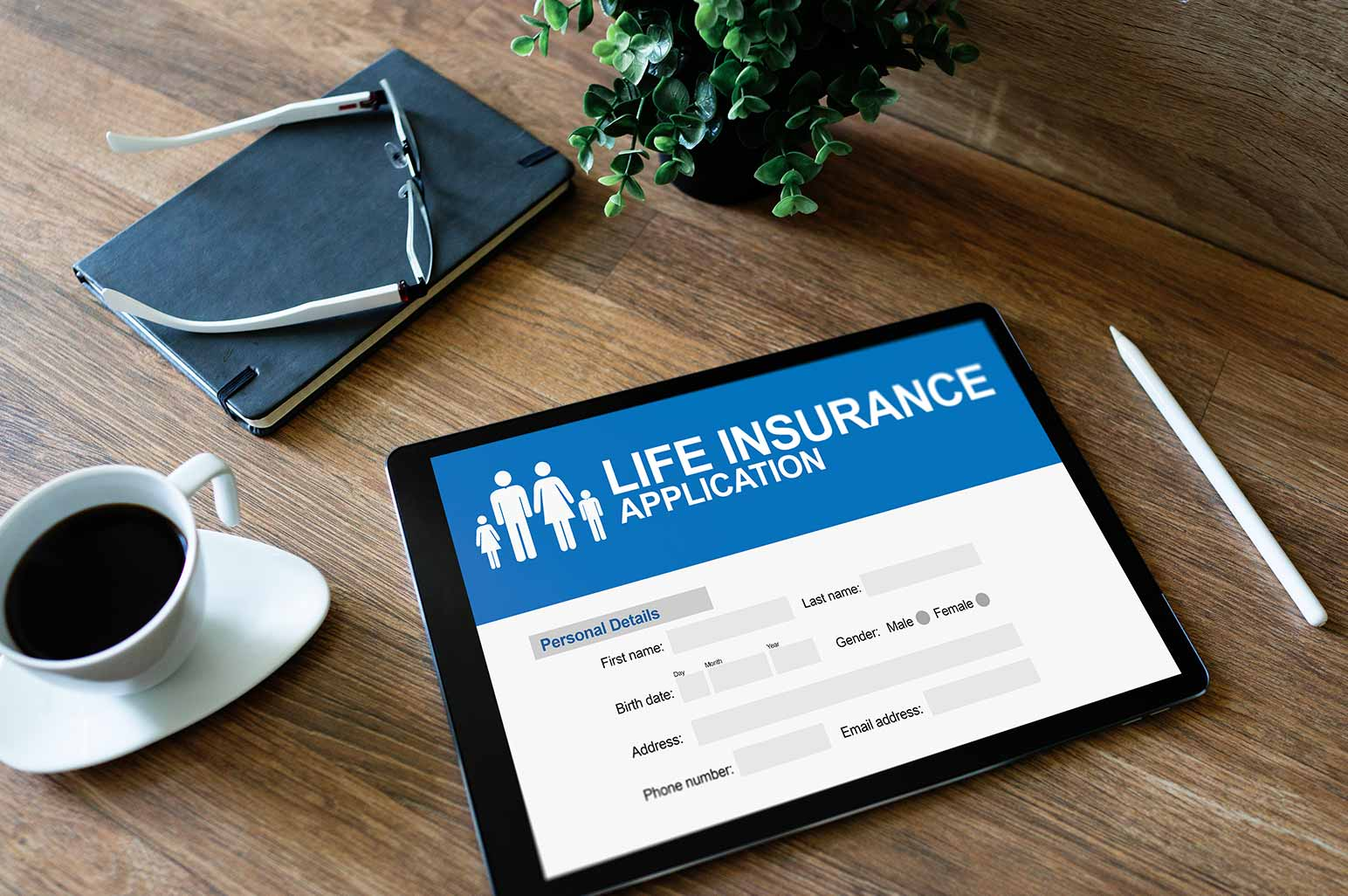 What Are The Basic Insurance Policies You Should Have