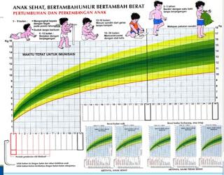 Ini Lho Rahasia Nutrisi Untuk Anak Sehat, Kuat Dari Dalam