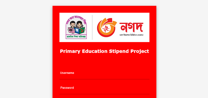 How to Update information of primary education stipend in Nagad Portal | pesp.mynagad.com