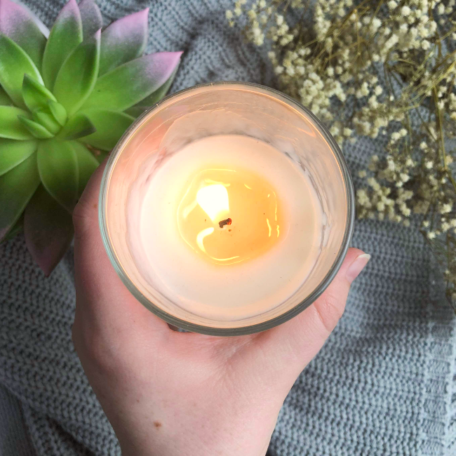 Hand holding a candle with succulent in the background