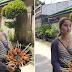 Isang Dalaga na titinda ng Banana Cue nagviral Dahil sa Angking Ganda Nito!