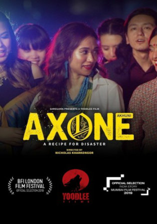 Axone 2019 WEBRip 300Mb Hindi 480p ESub