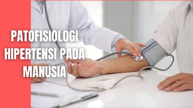 Patofisiologi Hipertensi Pada Manusia Tubuh memiliki sistem yang berfungsi mencegah perubahan tekanan darah secara akut yang disebabkan oleh gangguan sirkulasi, yang berusaha untuk mempertahankan kestabilan tekanan darah dalam jangka panjang reflek kardiovaskular melalui sistem saraf termasuk sistem kontrol yang bereaksi segera.   Kestabilan tekanan darah jangka panjang dipertahankan oleh sistem yang mengatur jumlah cairan tubuh yang melibatkan berbagai organ terutama ginjal.    Perubahan Anatomi dan Fisiologi Pembuluh Darah Aterosklerosis adalah kelainan pada pembuluh darah yang ditandai dengan penebalan dan hilangnya elastisitas arteri. Aterosklerosis merupakan proses multifaktorial.   Terjadi inflamasi pada dinding pembuluh darah dan terbentuk deposit substansi lemak, kolesterol, produk sampah seluler, kalsium dan berbagai substansi lainnya dalam lapisan pembuluh darah. Pertumbuhan ini disebut plak.   Pertumbuhan plak di bawah lapisan tunika intima akan memperkecil lumen pembuluh darah, obstruksi luminal, kelainan aliran darah, pengurangan suplai oksigen pada organ atau bagian tubuh tertentu.  Sel endotel pembuluh darah juga memiliki peran penting dalam pengontrolan pembuluh darah jantung dengan cara memproduksi sejumlah vasoaktif lokal yaitu molekul oksida nitrit dan peptida endotelium. Disfungsi endotelium banyak terjadi pada kasus hipertensi primer.    Sistem Renin-Angiotensin Mekanisme terjadinya hipertensi adalah melalui terbentuknya angiotensin II dari angiotensin I oleh angiotensin I-converting enzyme (ACE). Angiotensin II inilah yang memiliki peranan kunci dalam menaikkan tekanan darah melalui dua aksi utama.  Meningkatkan sekresi Anti-Diuretic Hormone (ADH) dan rasa haus. Dengan meningkatnya ADH, sangat sedikit urin yang diekskresikan ke luar tubuh (antidiuresis), sehingga menjadi pekat dan tinggi osmolalitasnya. Untuk mengencerkannya, volume cairan ekstraseluler akan ditingkatkan dengan cara menarik cairan dari bagian intraseluler. Akibatnya, volume dar