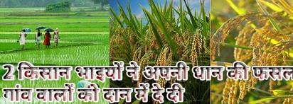धान बिक्री News in Hindi|Bank of Baroda|