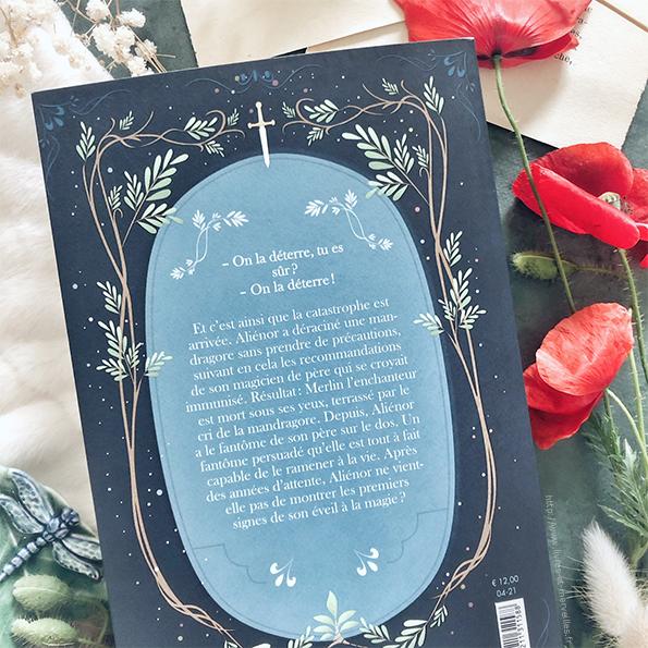 Roman jeunesse : Aliénor fille de Merlin - partie 1