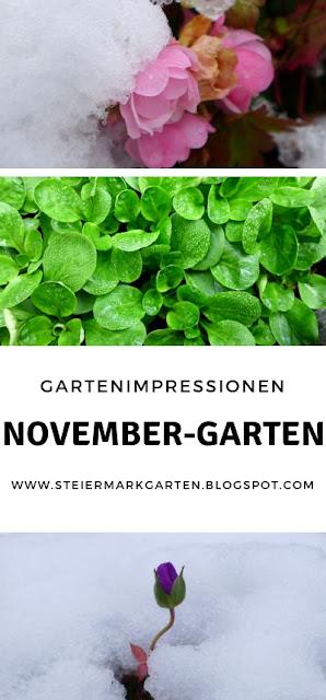 November-Garten-Pin-Steiermarkgarten
