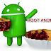 Cara Root Android 9.0 Pie dengan Magisk