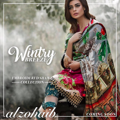 Al-Zohaib-wintry-breeze-embroidered-shawl-collection-2017-for-women-3