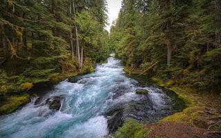 تفسير مشاهدة النهر في حلم العزباء
