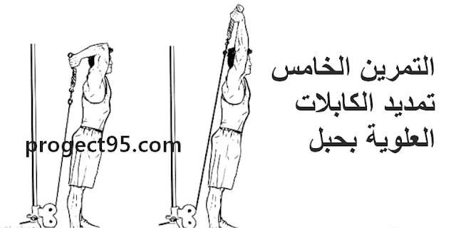 أقوي 10 تمارين لتضخيم عضلات الذراعين بالصور في اسرع وقت ممكن | ضخم ذراعيك الأن 2021
