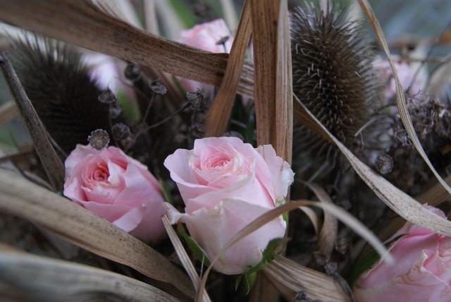 Filz Und Garten Gartenblog Diy Trockenstrauß Aus Chinaschilf