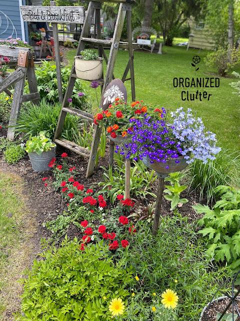 2020 SPRING PLANTING Junk Garden Tour #junkgarden #rusticgarden #annuals #perennials #gardentour