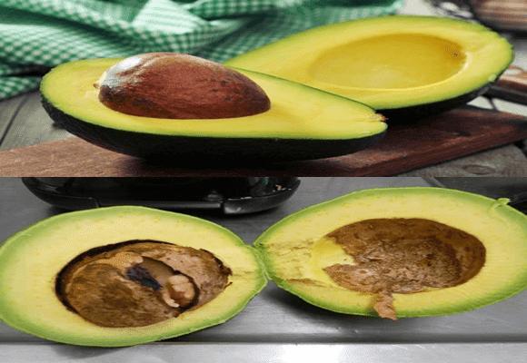 Compartilhei-testei-abacate-apodreceu