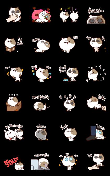 Tofu Cat Animated 2