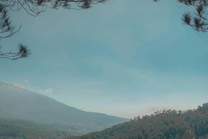 Wisata Goa Pinus Pujon Malang