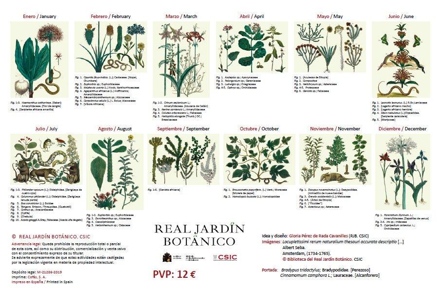 Ilustraciones del gabinete de curiosidades de Albert Seba en el Calendario 2020 Real Jardín Botánico - CSIC