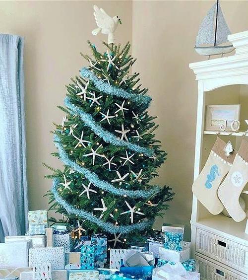 Best Coastal Christmas Trees