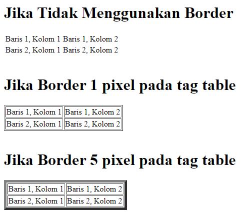 Border Pada Tabel HTML