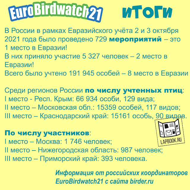 Итоги учета птиц Eurobirdwach 2021