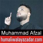 https://www.humaliwalayazadar.com/2019/09/muhammad-afzal-nohay-2020.html