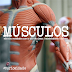 Modelador/cinta modela os músculos?