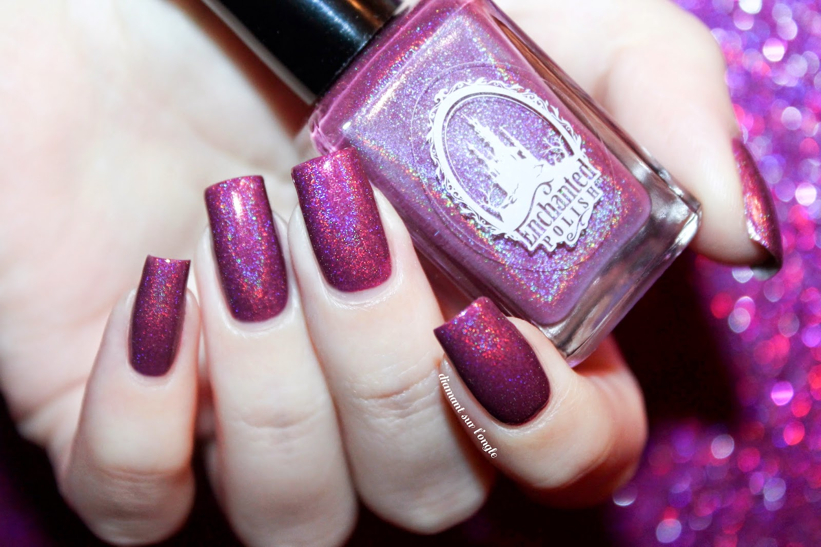 Swatch of February 2014 by Enchanted Polish