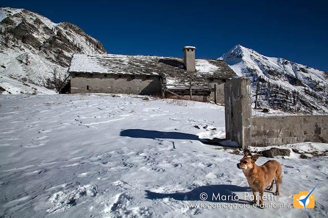 Alpe i Motti e Ambra