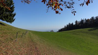 Trail zum Allerheiligenberg