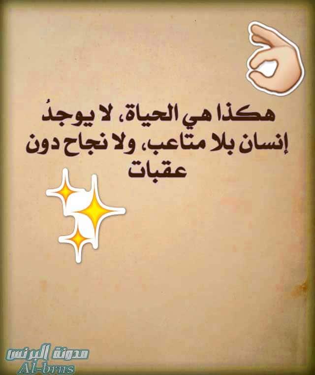 كلام من ذهب عن الحياة (2)