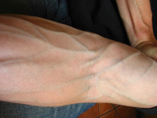 Why do we see the veins veins in green or light blue ...