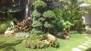 Jasa Tukang Taman Surabaya Jawa Timur D