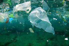 How the environment is pollute  day by day ?