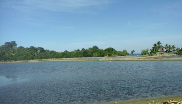 Tanah Jampea di Selayar, Pulau Bergelimang Potensi yang Tak 'Terjamah'