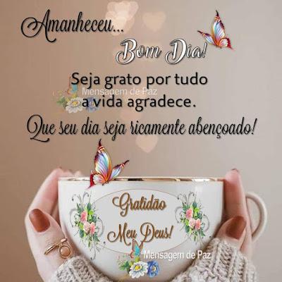 Amanheceu... Bom Dia! Seja grato por tudo a vida agradece. Que seu dia seja ricamente abençoado! Gratidão Meu Deus! Bom Dia!